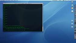 Mac OS X 10.6